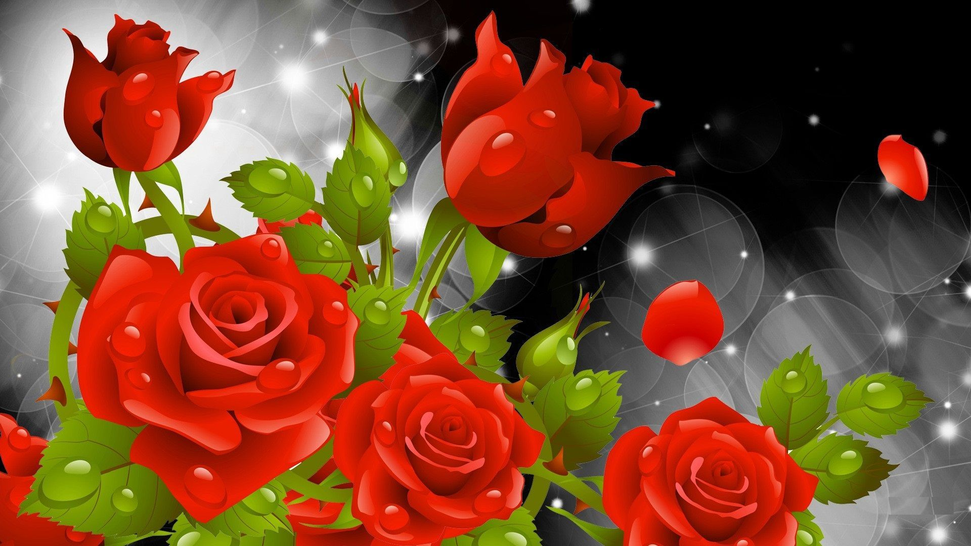 Backgrounds Rose Flower Hd Cave On Red Images Of Smartphone | Full ...