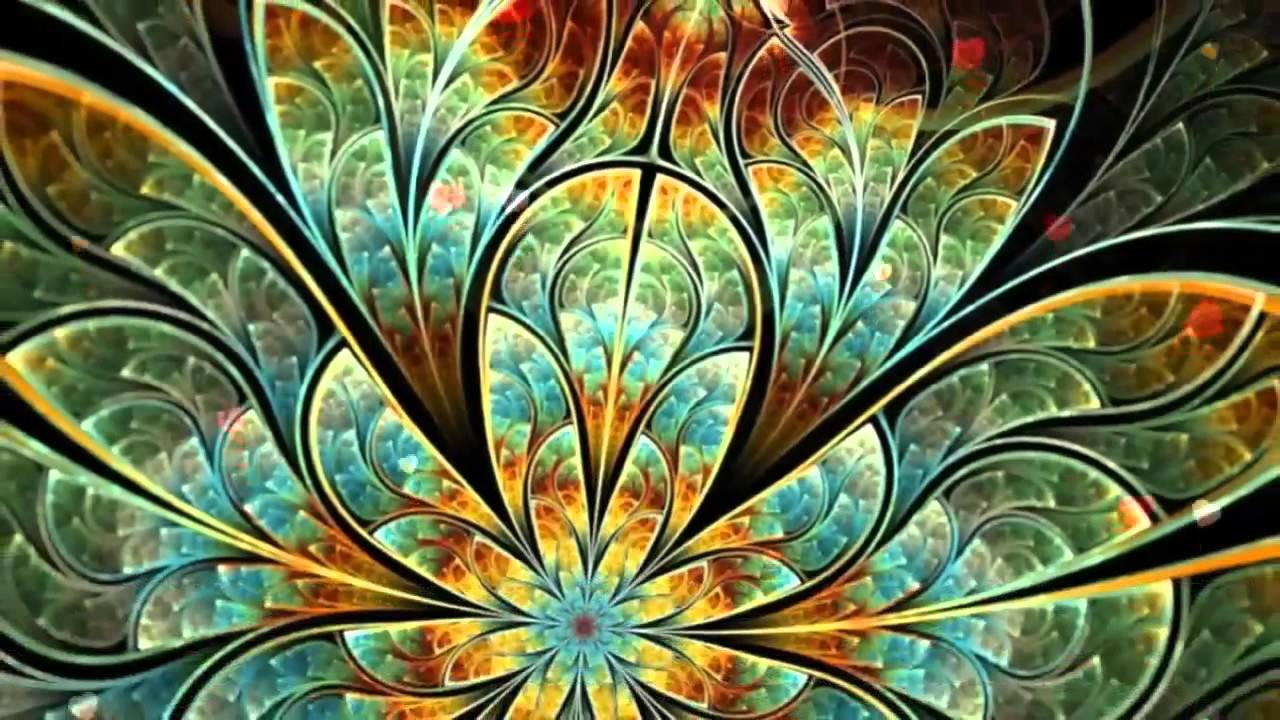 Most Beautiful Flowers Wallpapers 3d 2 - YouTube