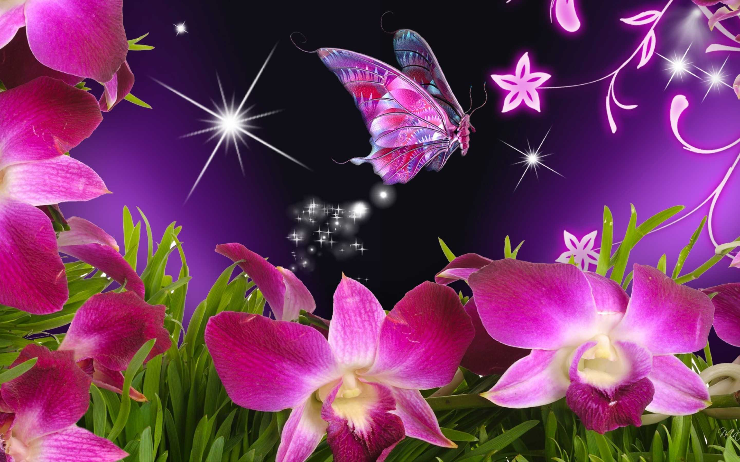 3d Flower Wallpaper For Mobile Desktop Hd Images Pc Natural With ...