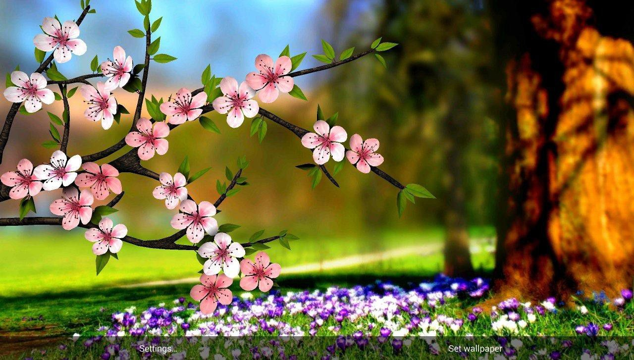 Latest 3d Flowers Images Hd Pictures Wallpapers Pc