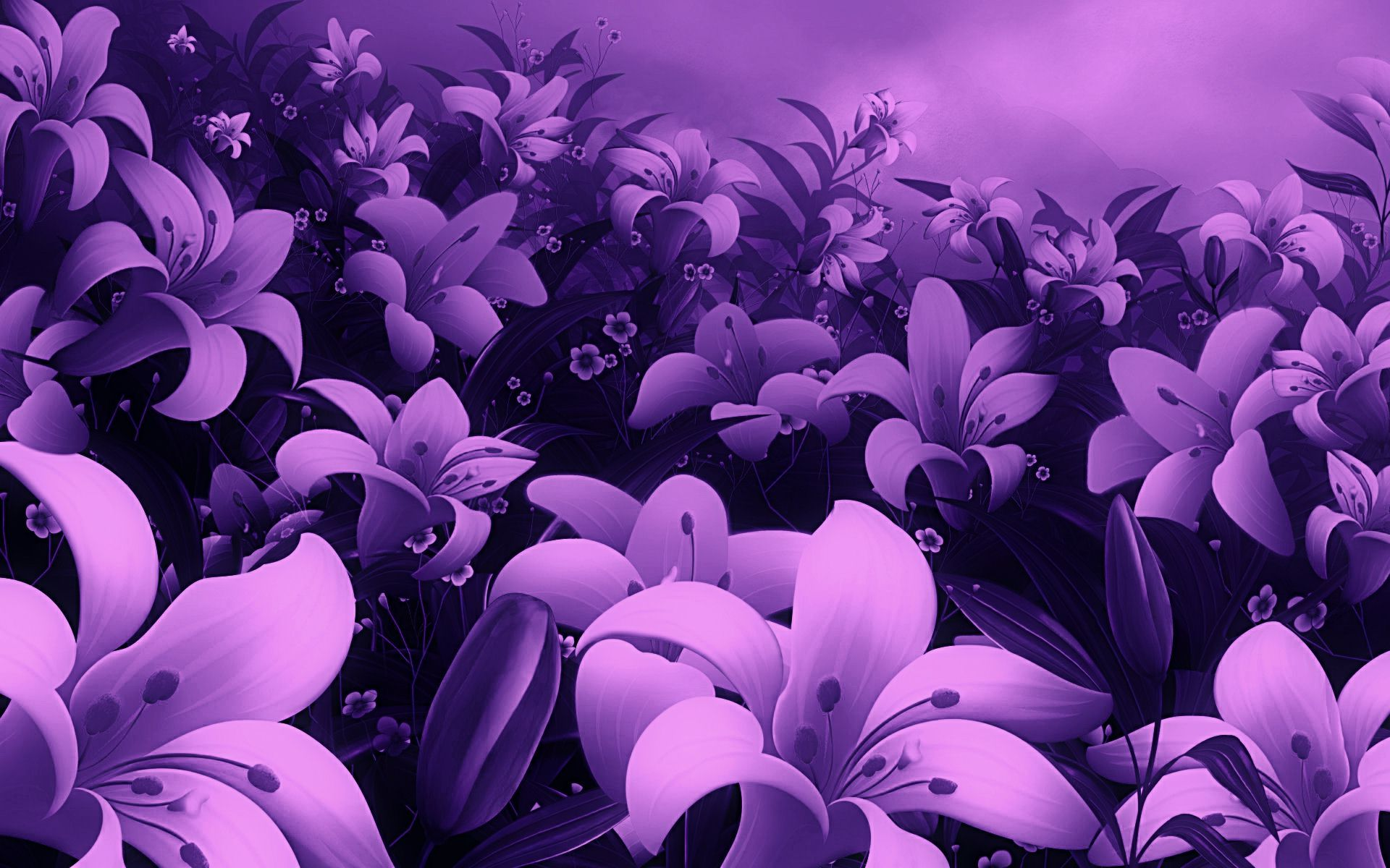 New Flowers Full Screen Hd Photo High Quality Violet Flower ...