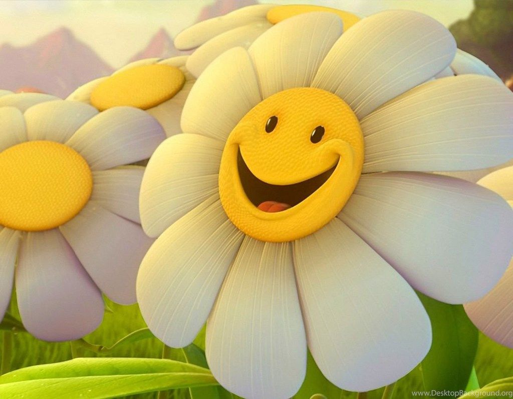 Cute Flowers Wallpapers Desktop Backgrounds Full Screen BACKGROUND ...