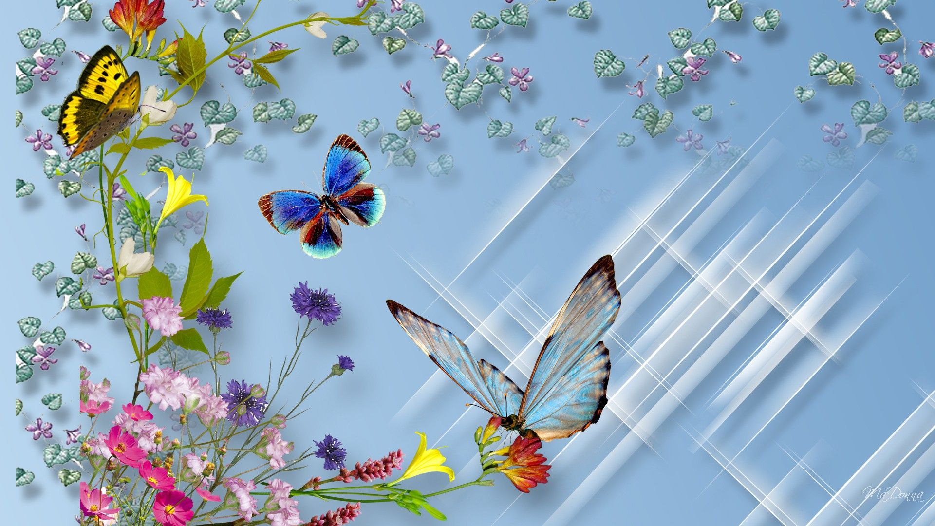Butterflies and Flowers Full HD Wallpaper and Background Image ...
