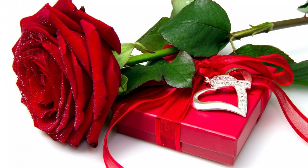 Red rose heart love flower box wallpaper | 2560x1401 | 478327 ...