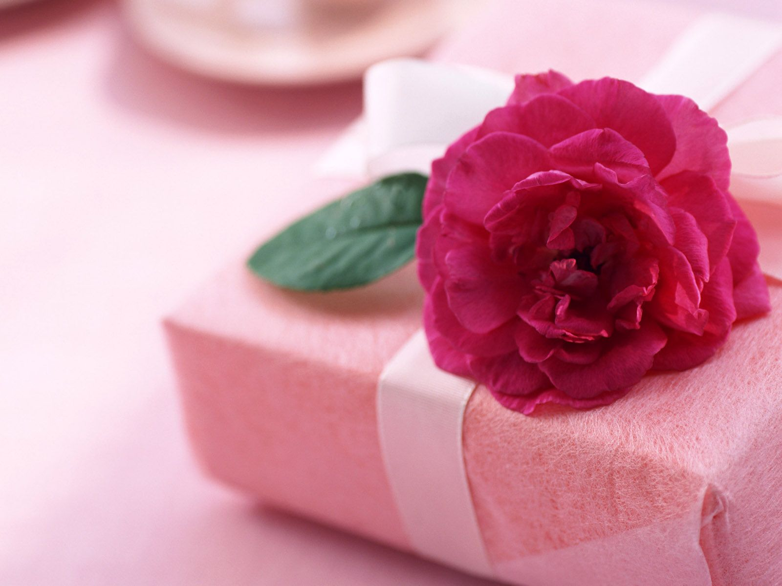 Gift of Love and Pink Flowers Wallpaper | HD Desktop Background