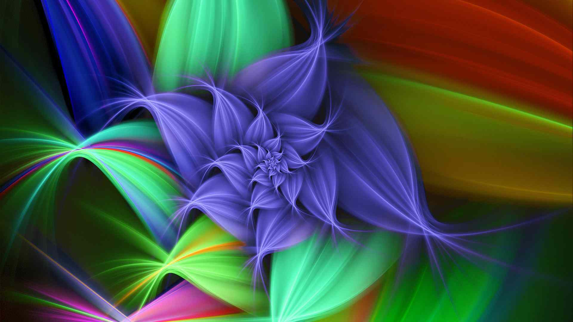 Awesome New Flowers Full Screen Hd Photo Download Desktop Fullscreen ...