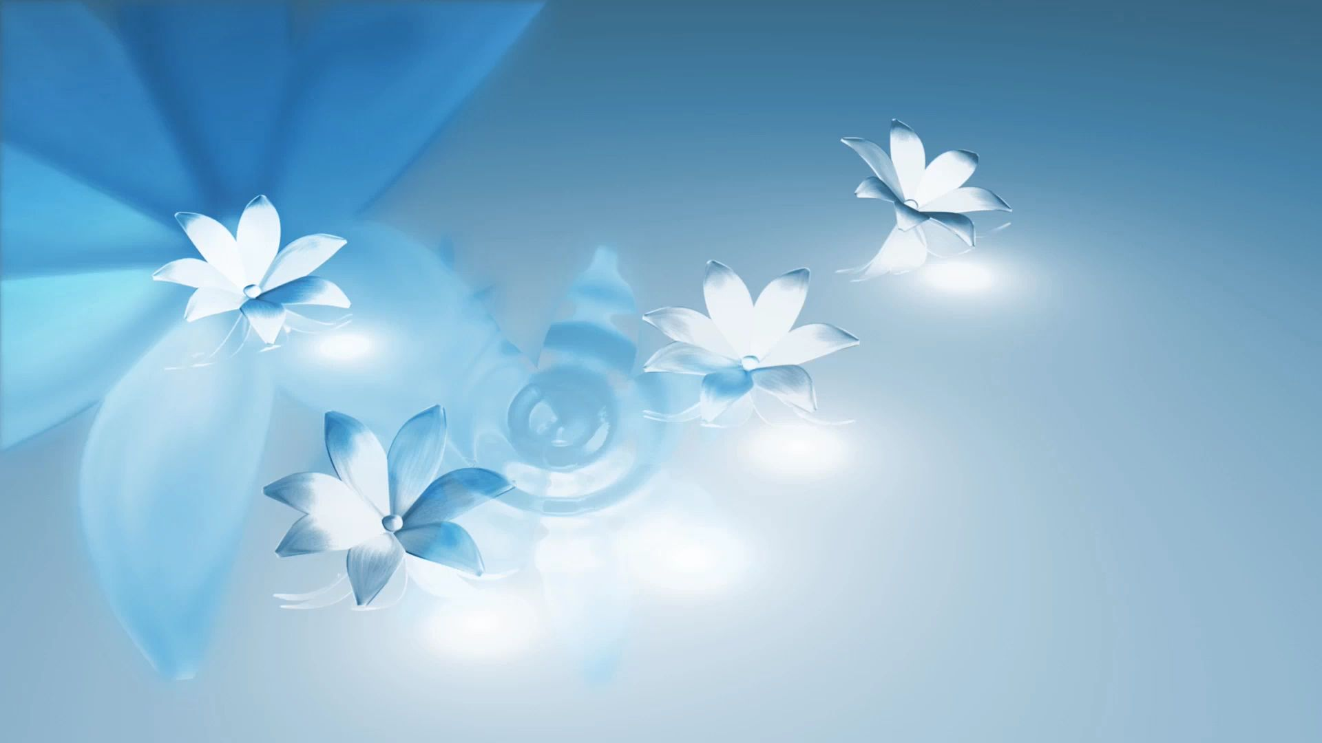 sky blue flower background 13 | Background Check All