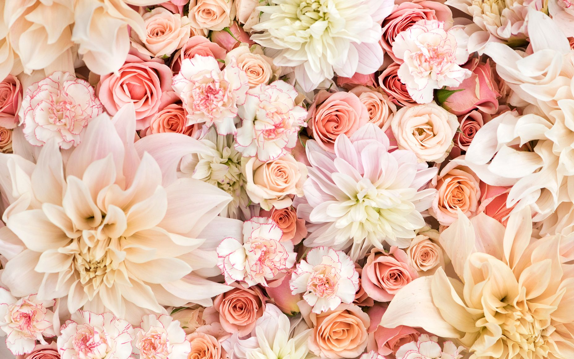 Flowers Floral Flowers wallpapers (Desktop, Phone, Tablet) - Awesome ...