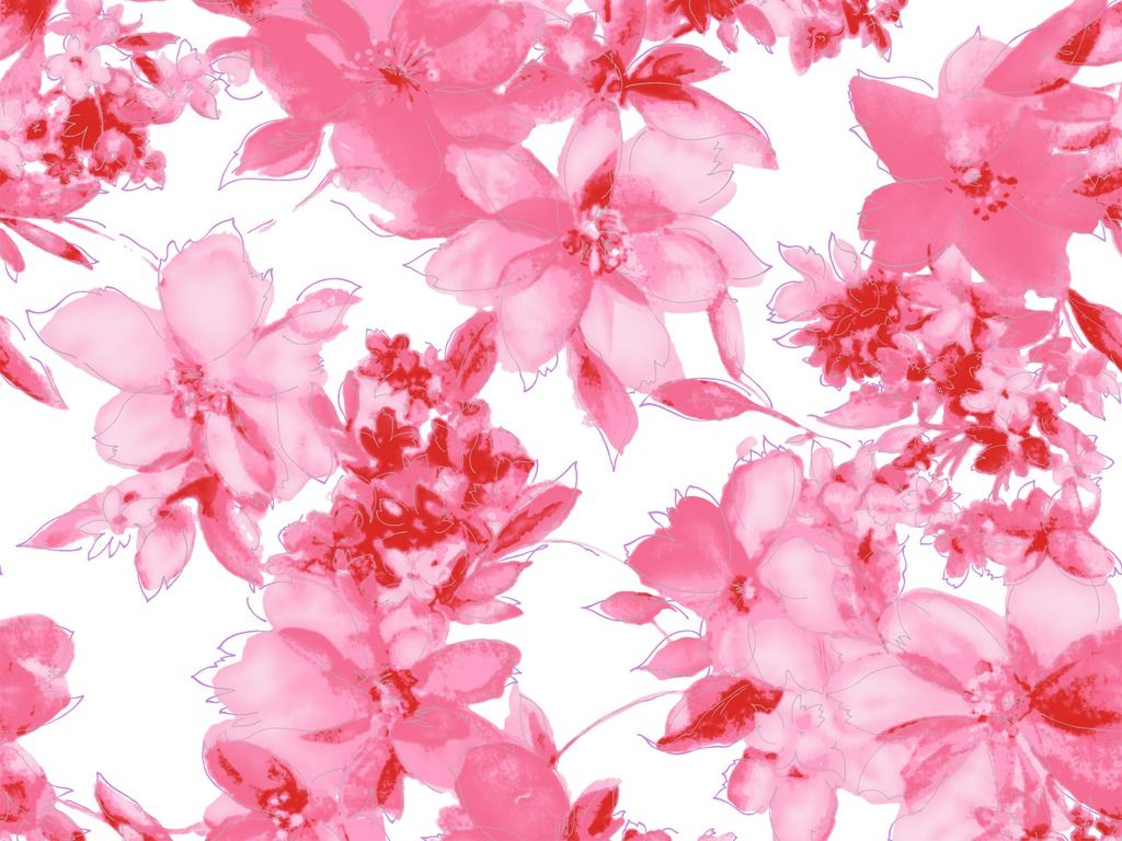 Pink Flowers Wallpaper Laptop HD | Beautiful flowers | Pinterest ...