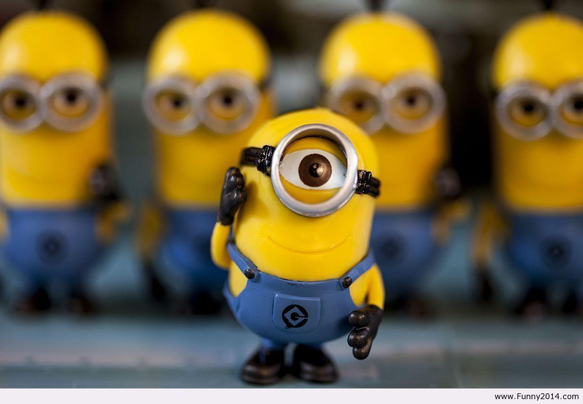 Minion Wallpaper 2014 | Free HD Desktop Wallpaper | Viewhdwall.
