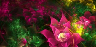 3d Flower Wallpapers.jpg