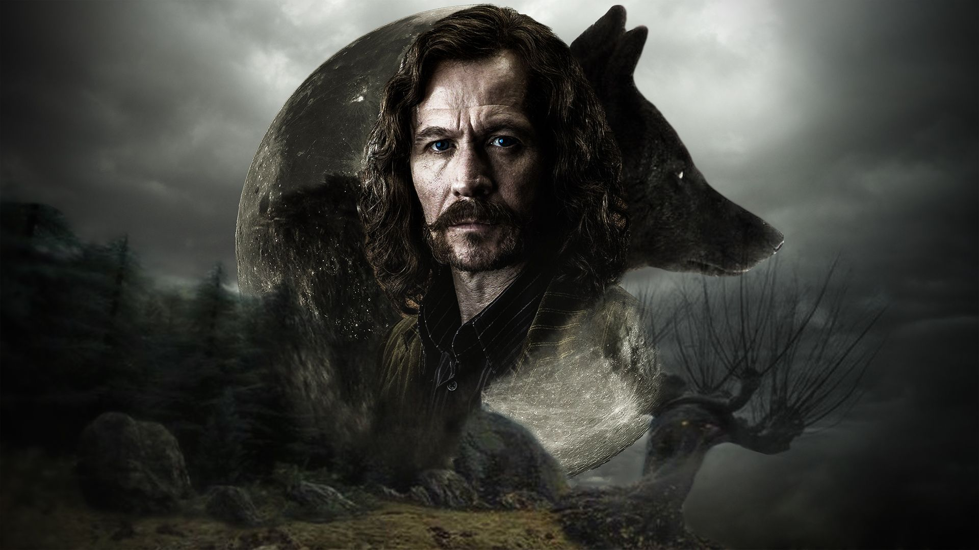Sirius black wallpapers Gallery