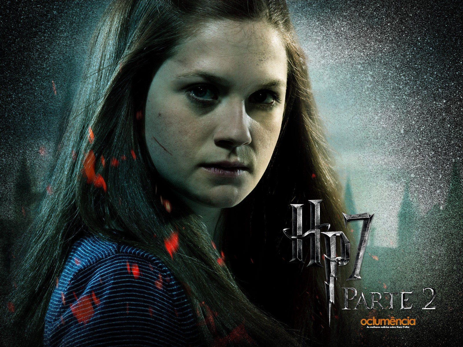 harry potter and the goblet of fire wallpapers high definition