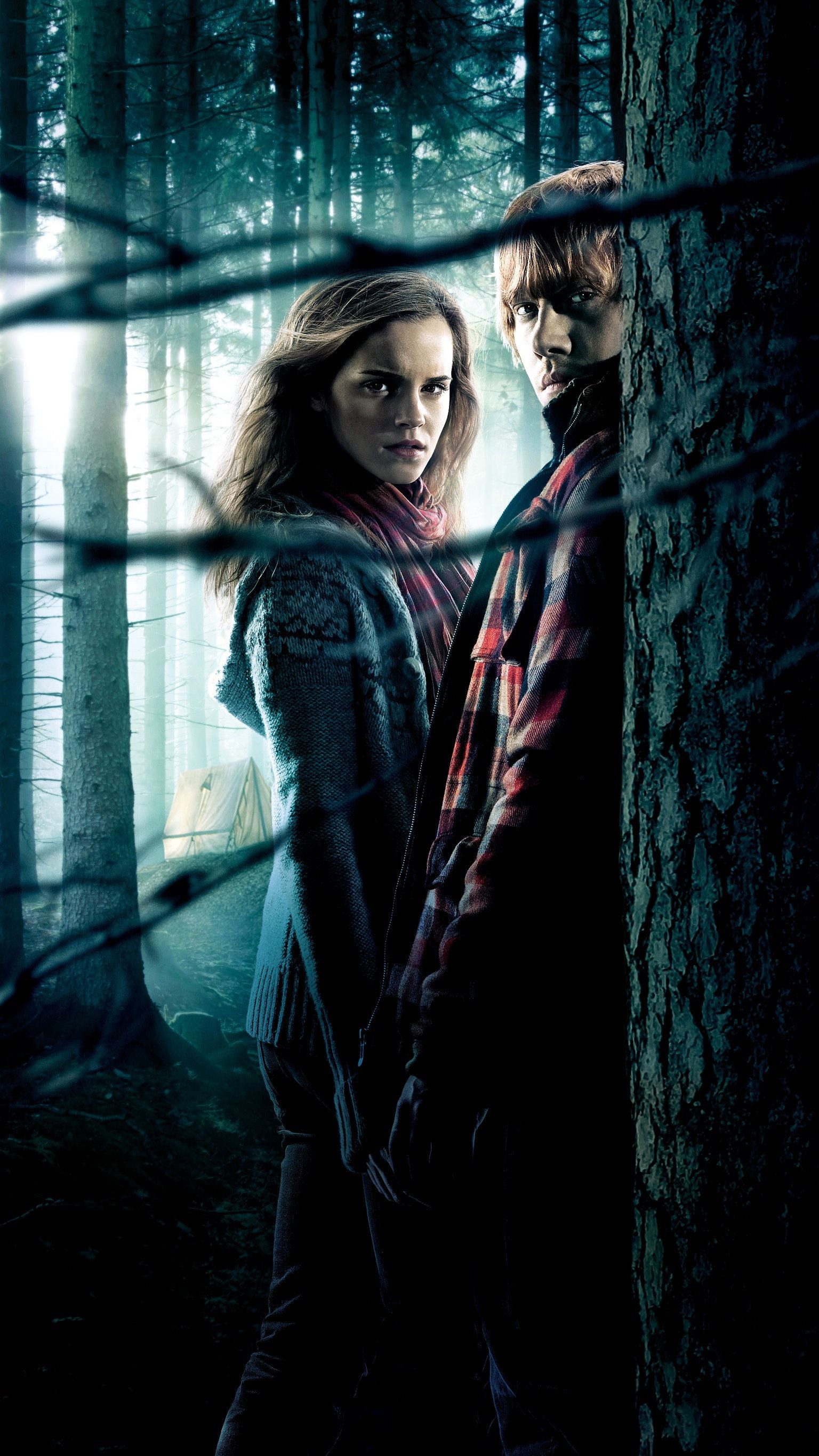 Harry Potter and the Goblet Of Fire Wallpapers Beautiful Harry Potter