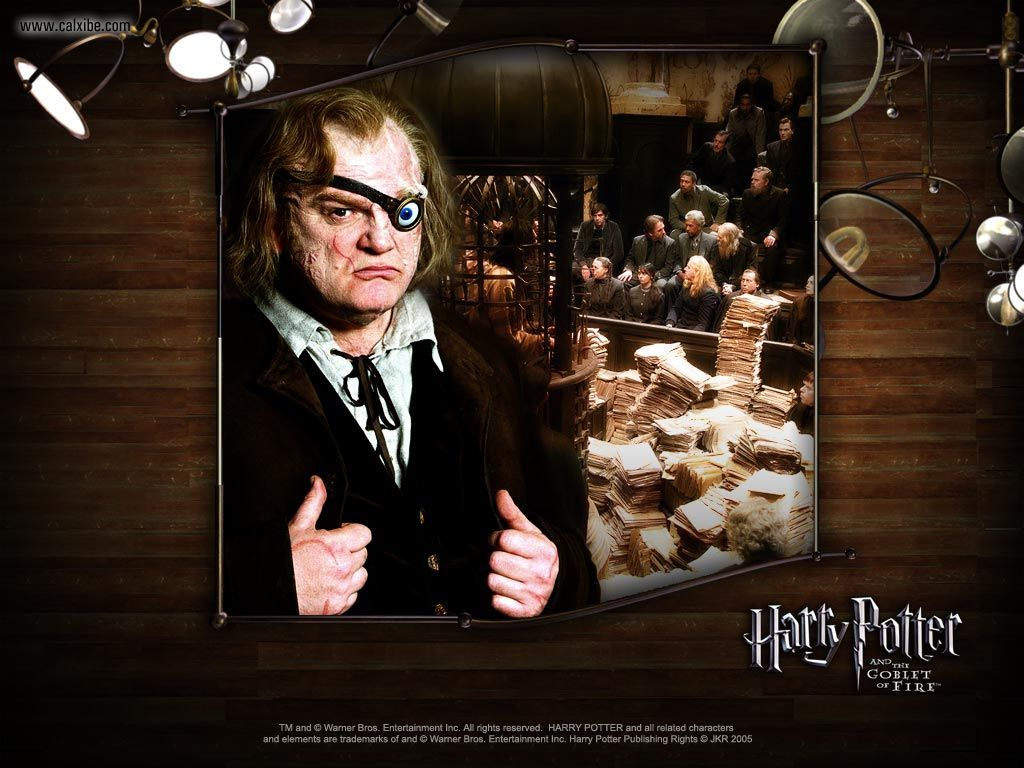 Movies: Harry Potter and the Goblet of Fire, picture nr. 19670