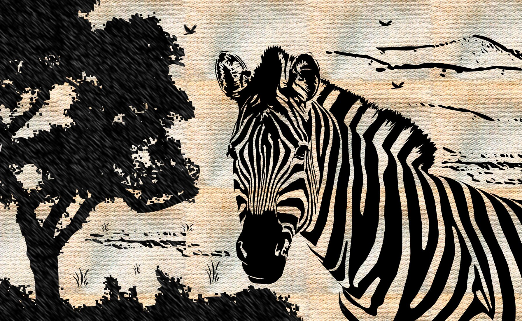 Zebra Wallpapers for Computers