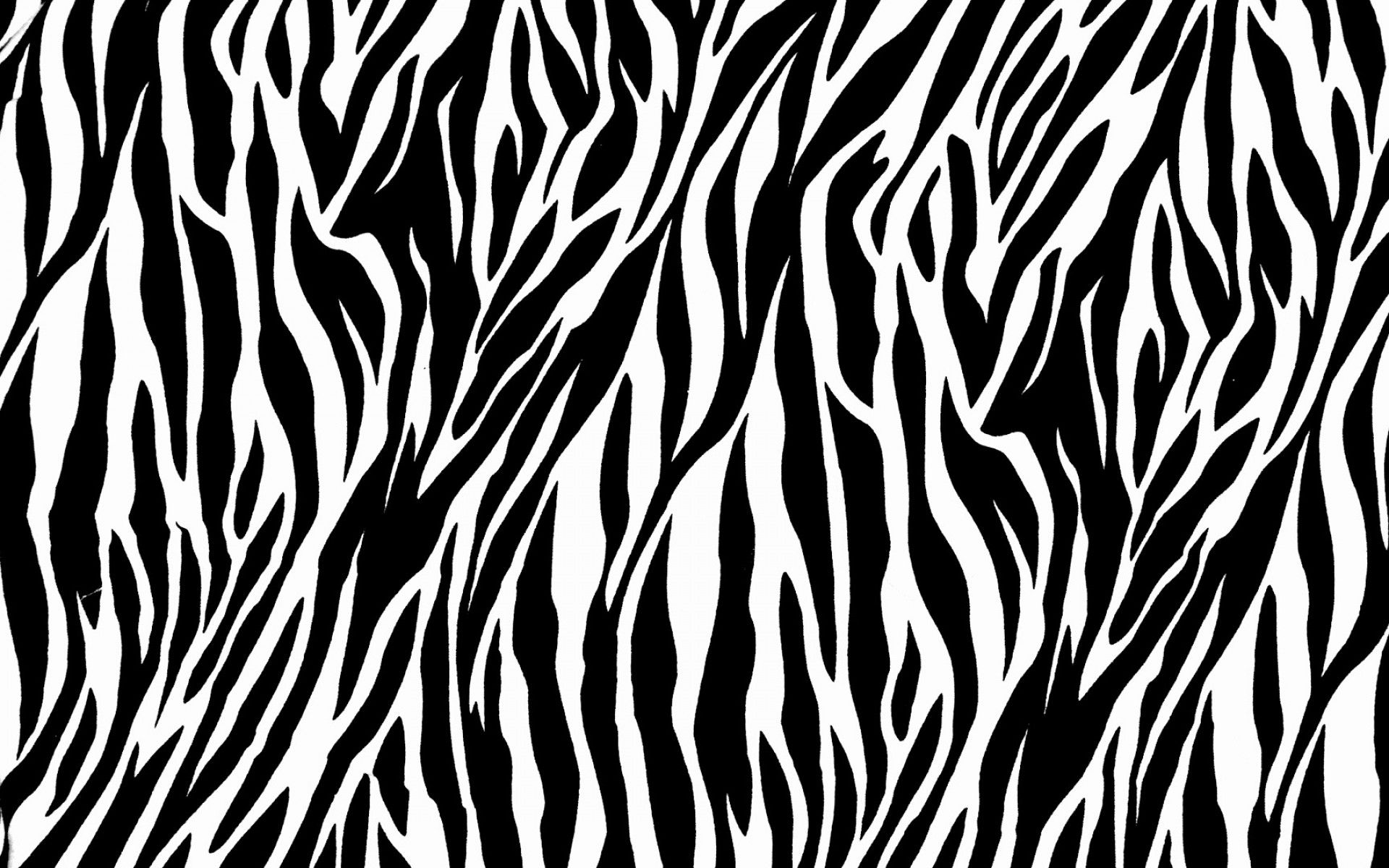Zebra Print Wallpapers HD