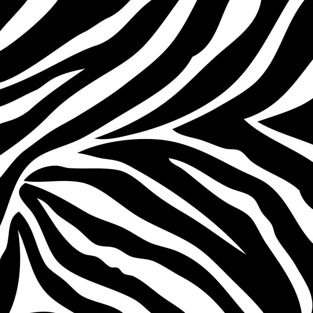 Zebra Print Wallpapers Border …
