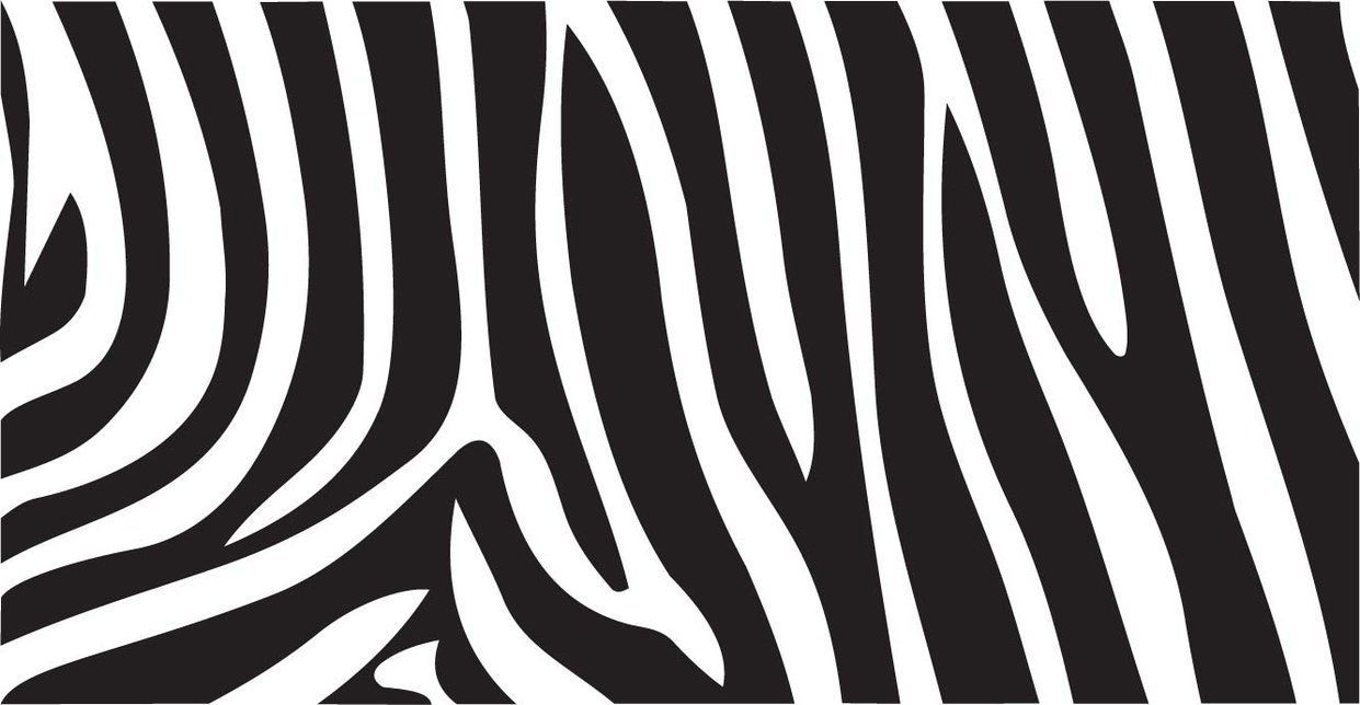 best image about Animal Print Zebra print