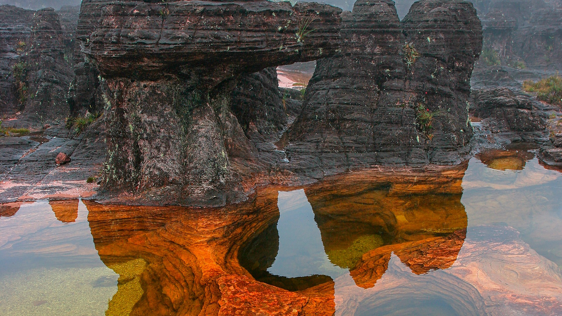 Natural pool on top of Mount Roraima, Venezuela