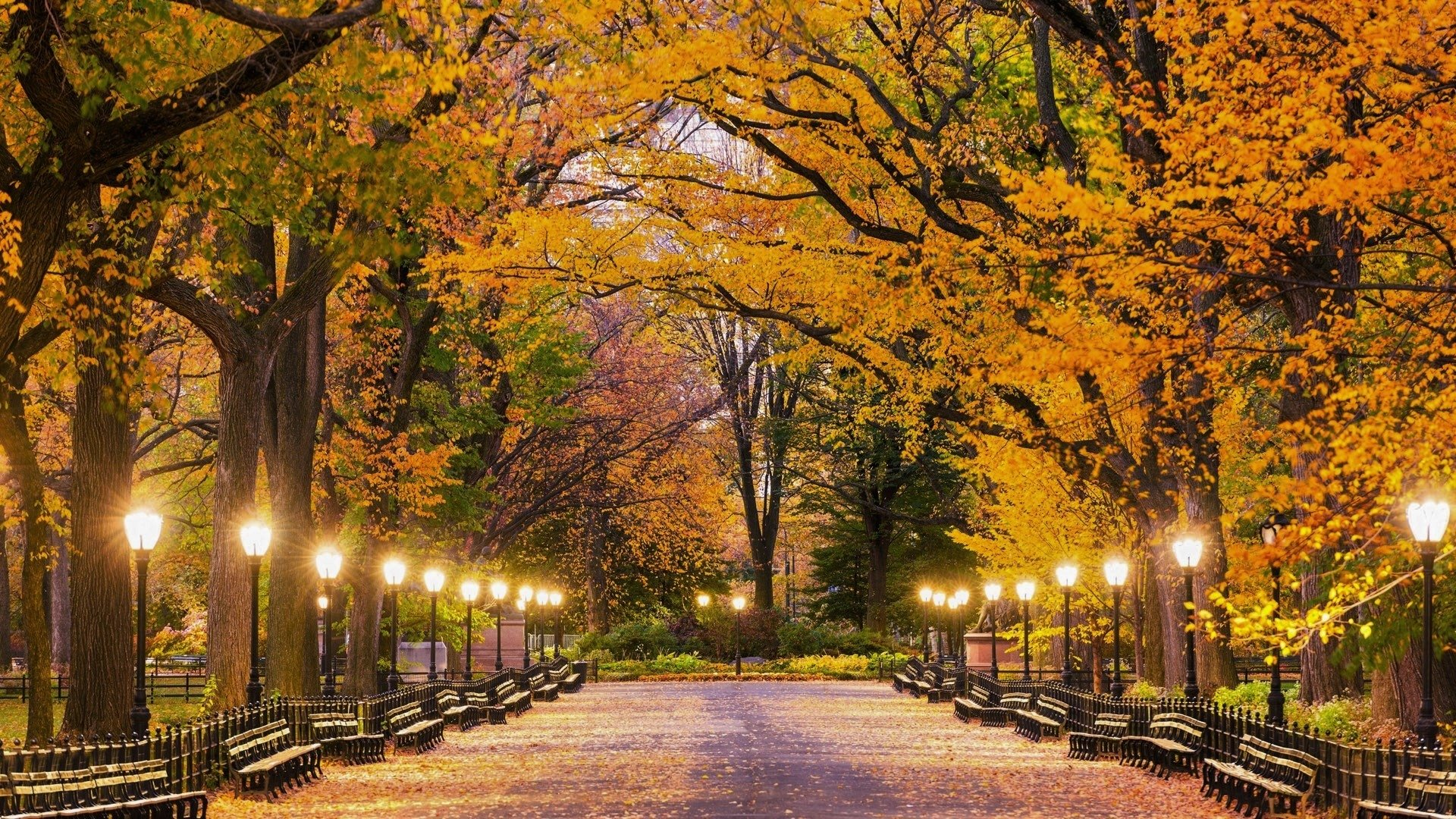Central Park in Autumn HD Wallpapers