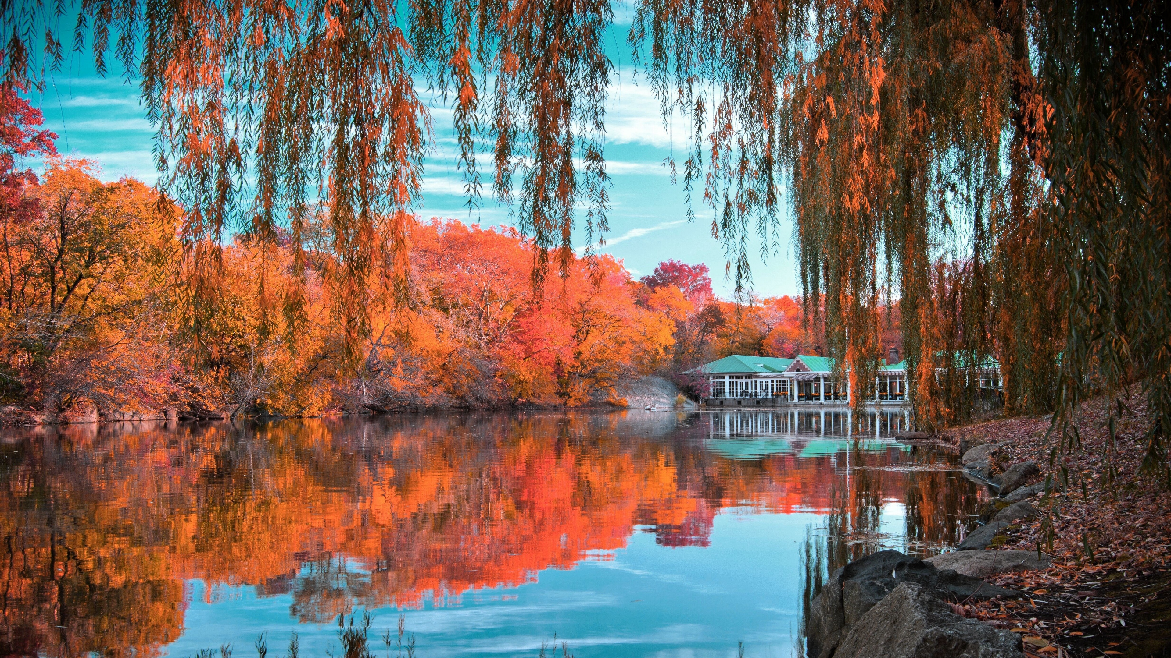 Download wallpapers 3840x2160 central park, new york, autumn