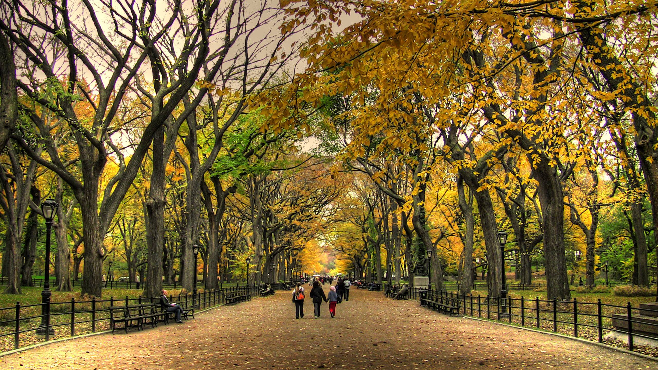 34 Central Park Wallpapers