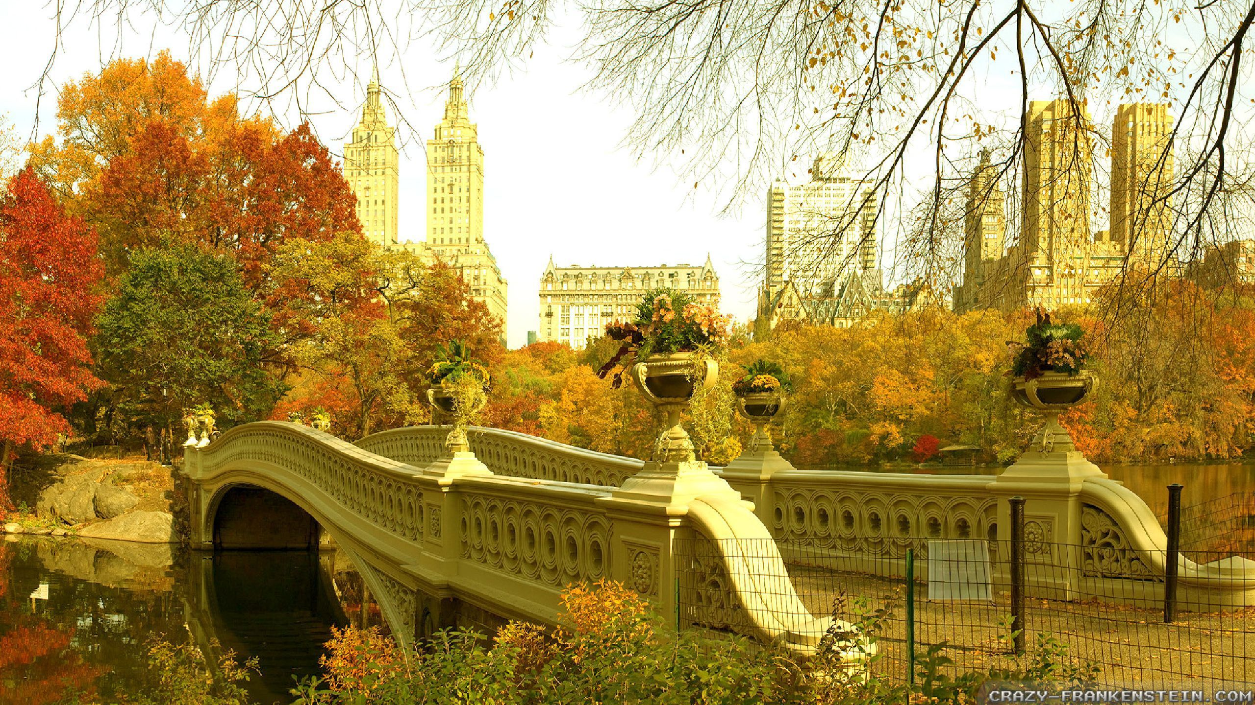 45+ Central Park New York Wallpapers