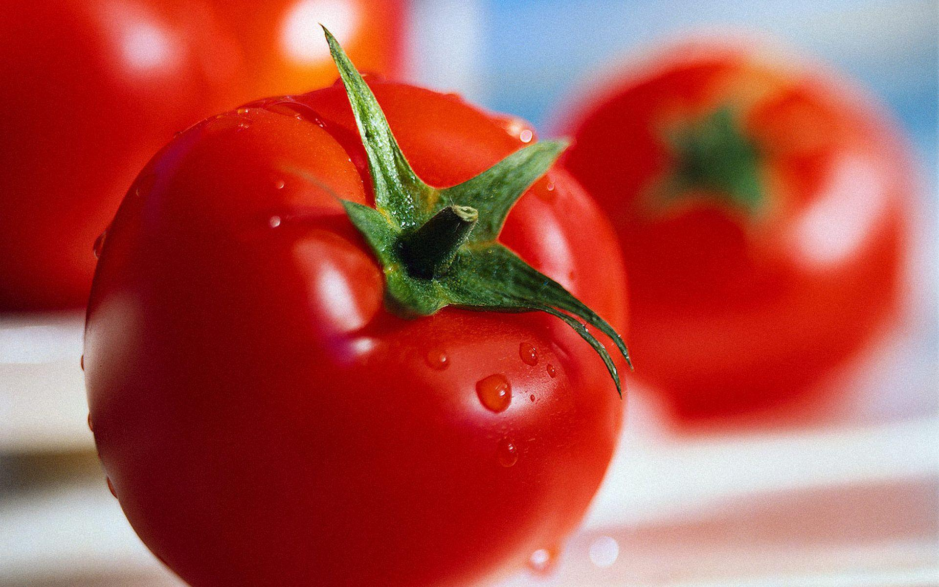 Tomato Wallpapers, Pictures, Image