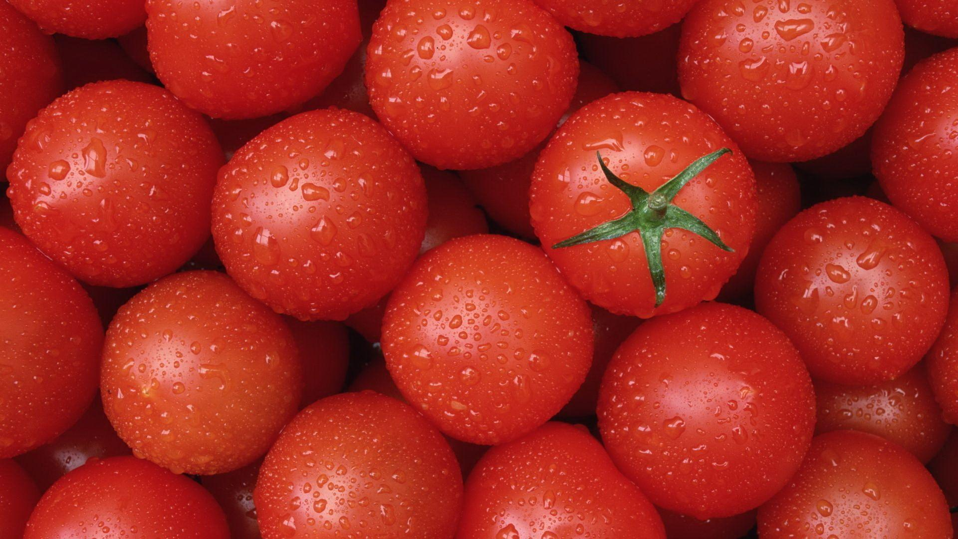 97 Tomato HD Wallpapers