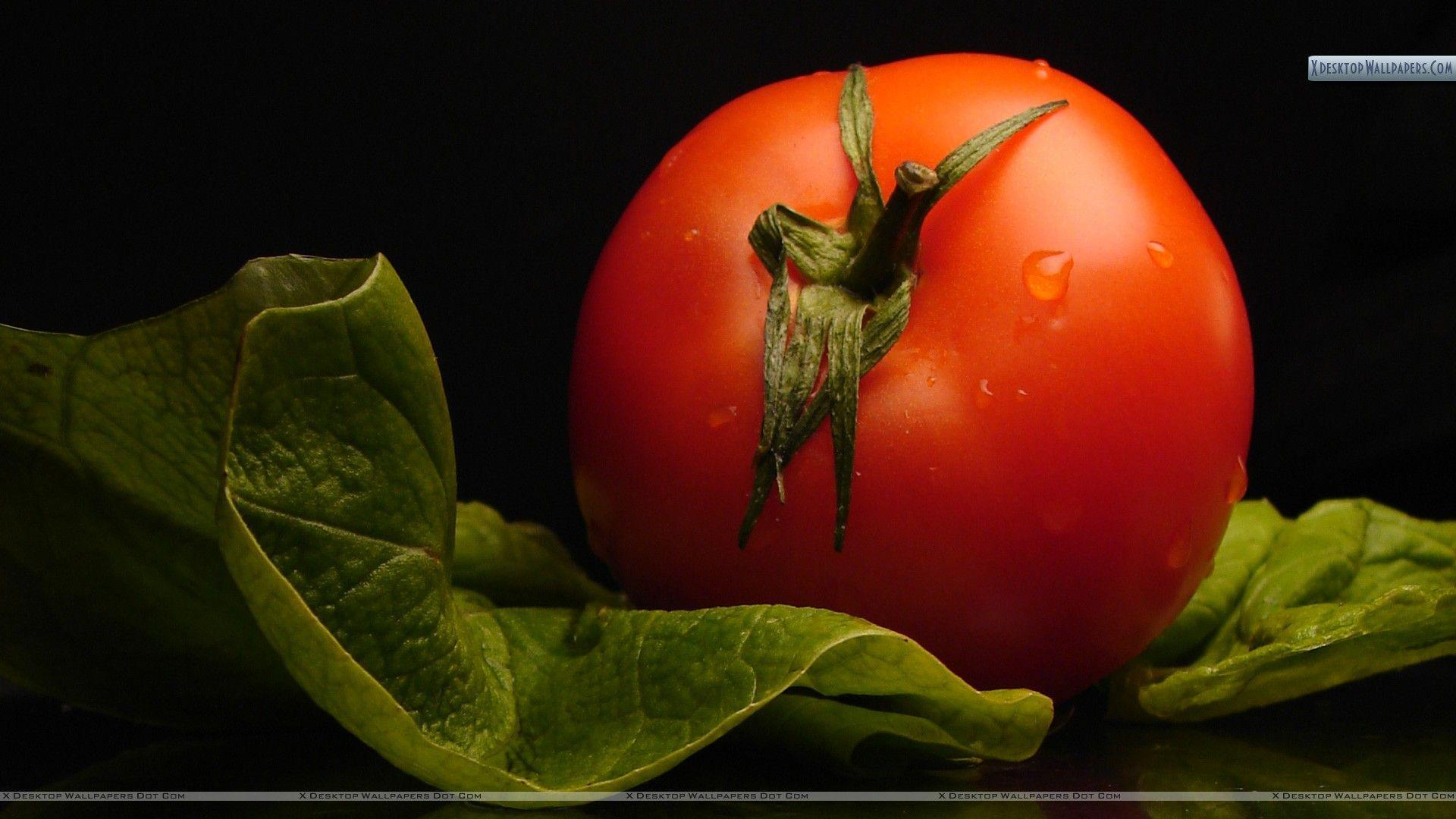 Tomato Wallpapers Group with 68 items