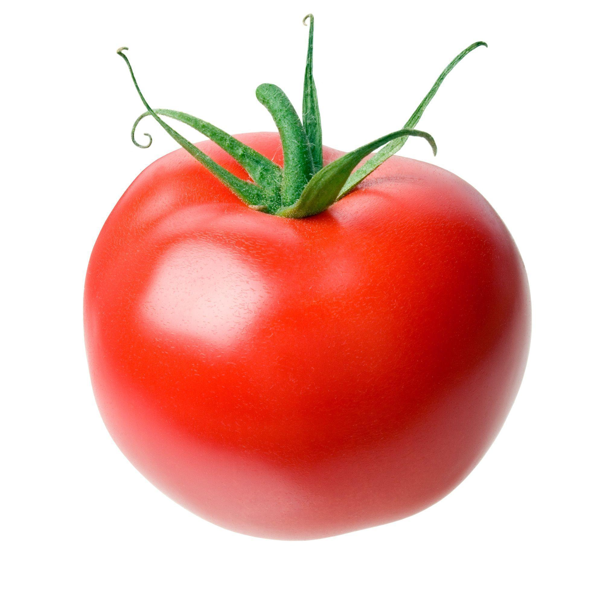 High Quality Tomato Wallpapers