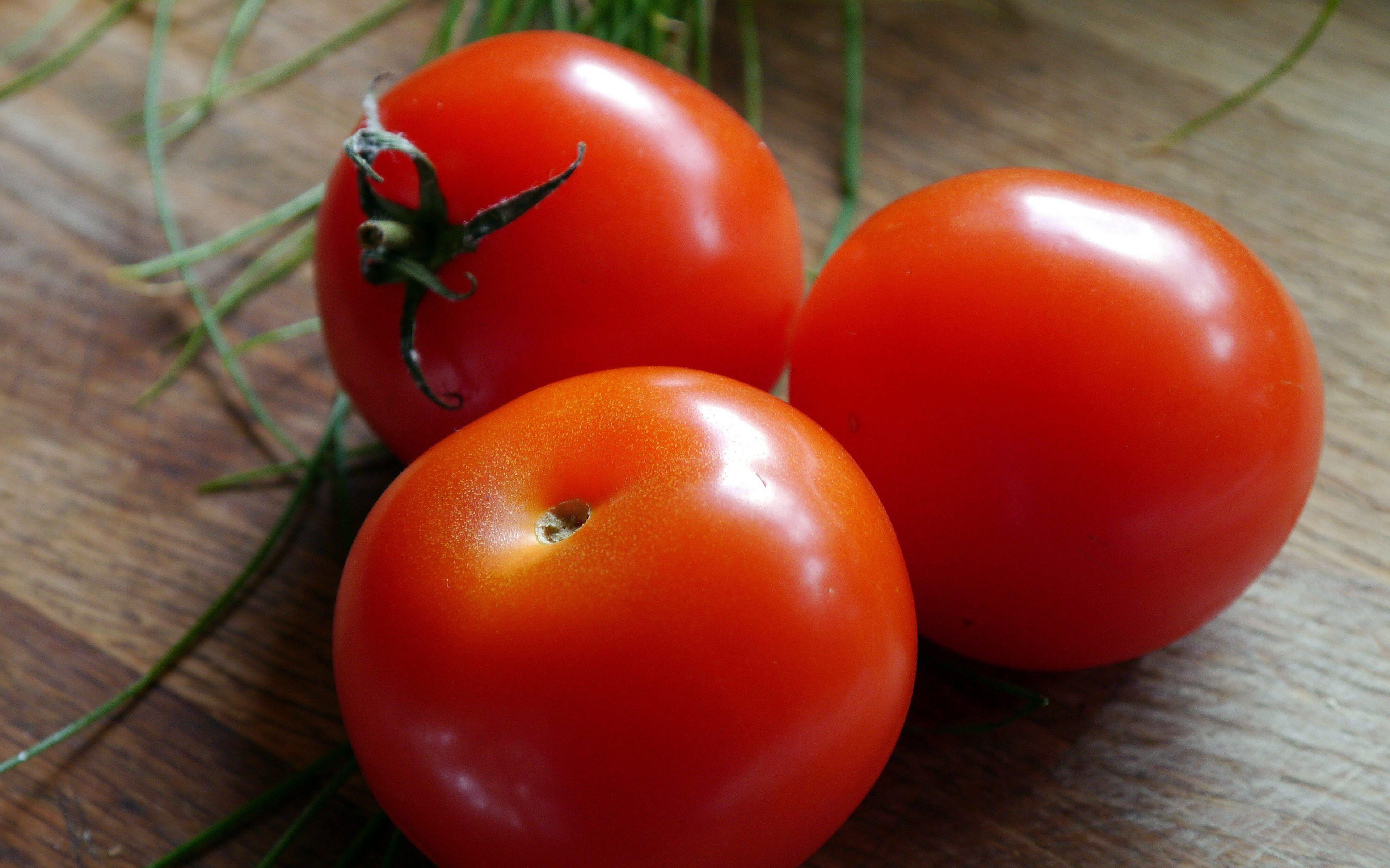 Fresh Tomatoes Wallpapers, Image, Wallpapers of Fresh Tomatoes in