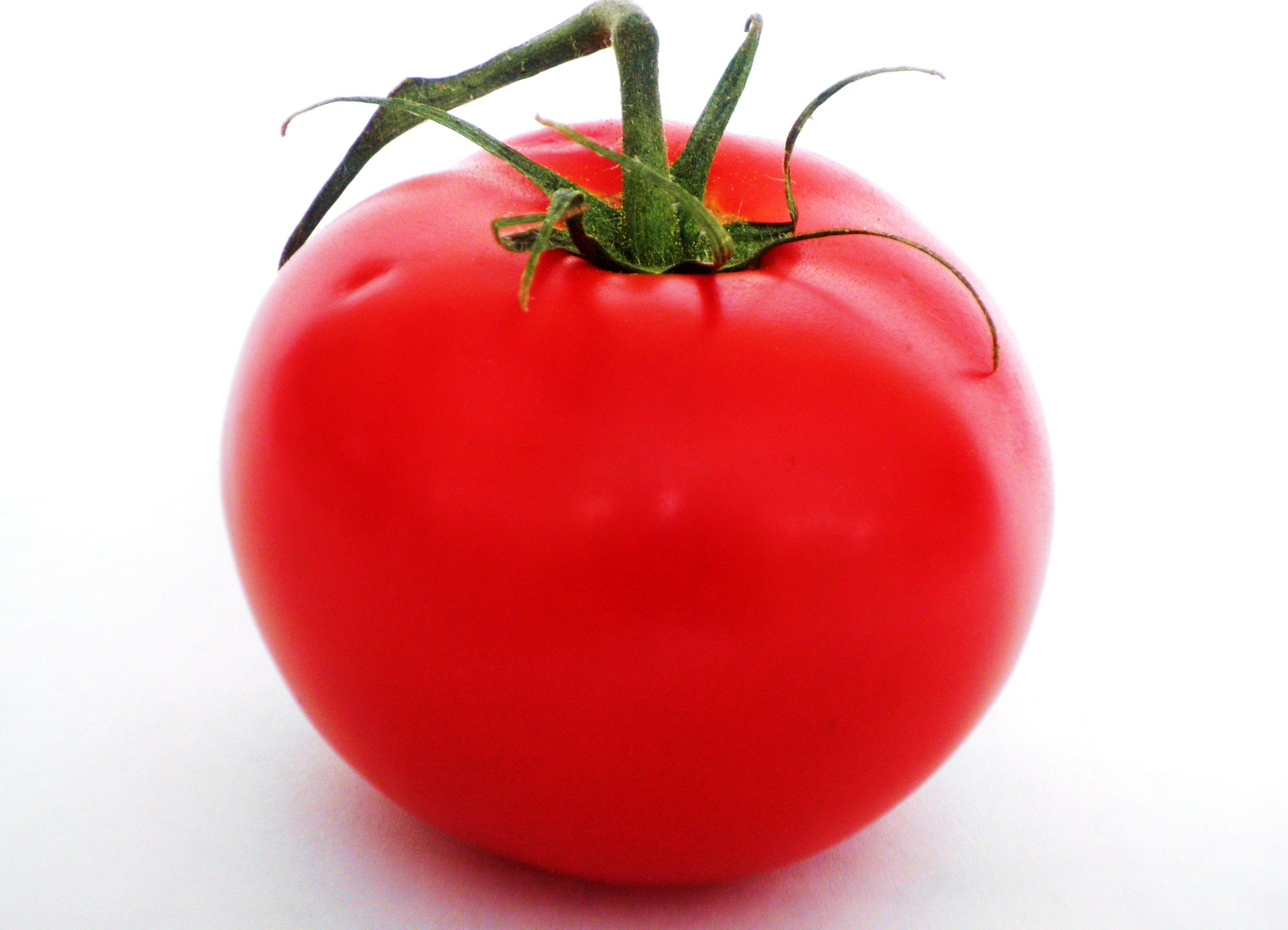 HD Tomato Wallpapers