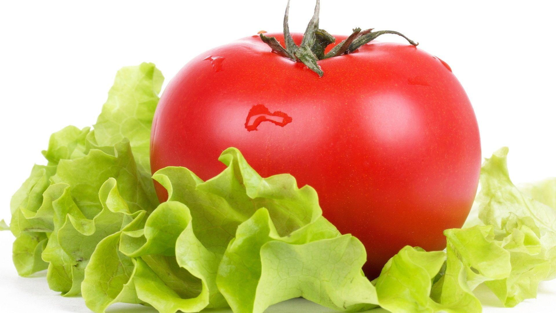 Download Wallpapers 1920x1080 Tomato, Salad, Vegetables, Fresh Full