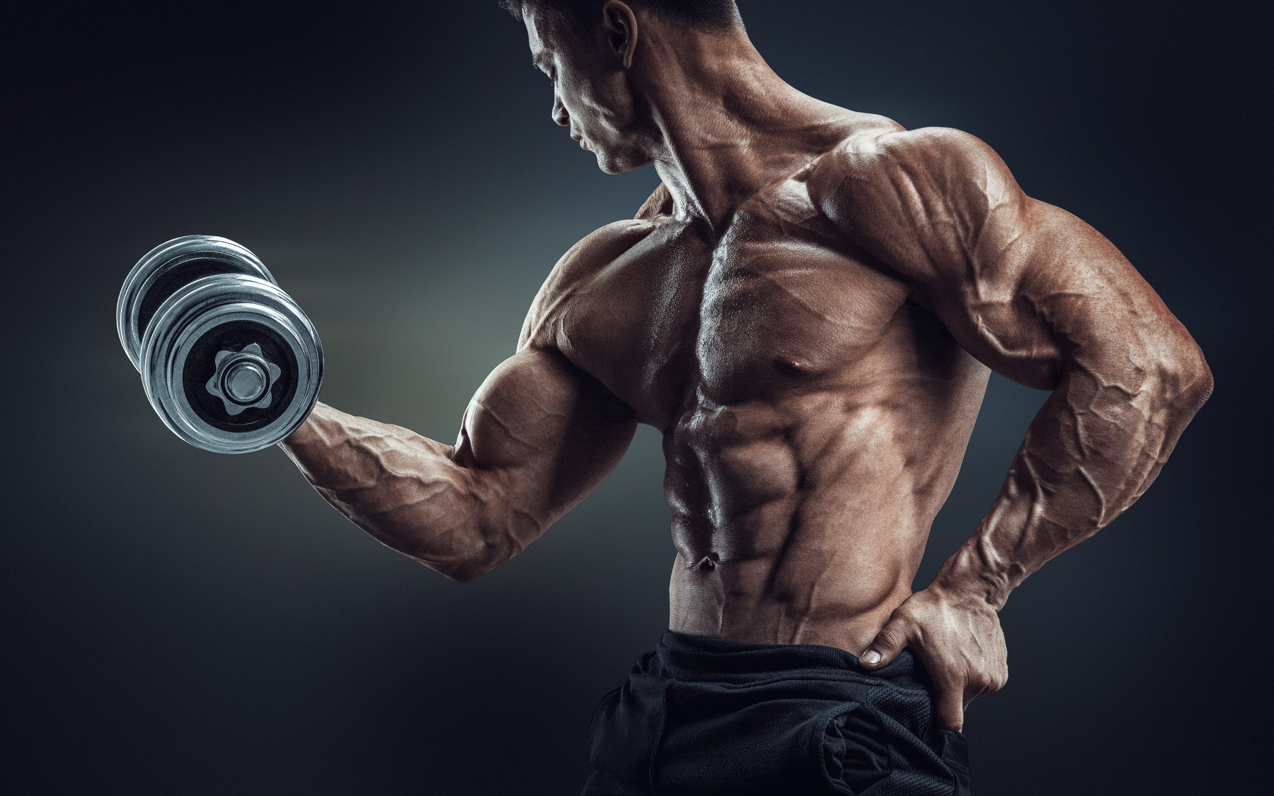 Bodybuilding Wallpapers 4