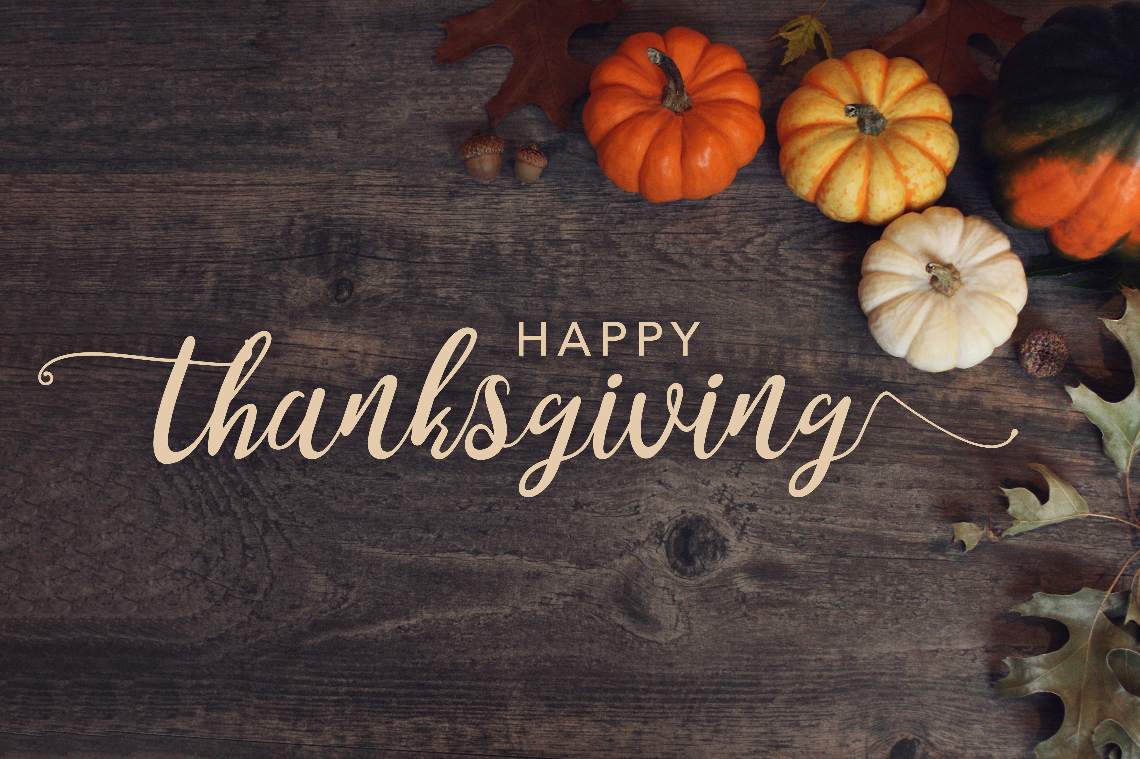 19+ Thanksgiving Backgrounds Image HD Free Download