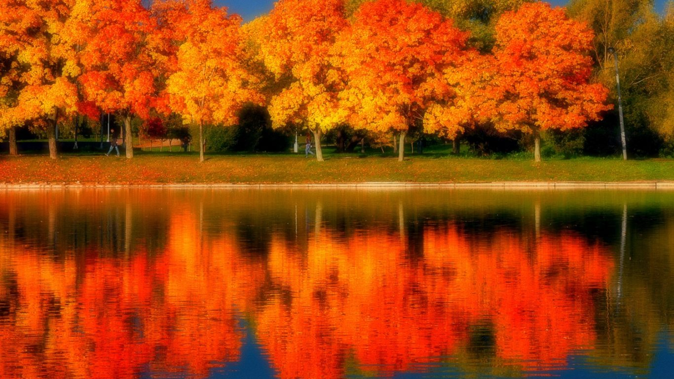 Autumn Fall Colors Gold Nature Reflection Water Trees