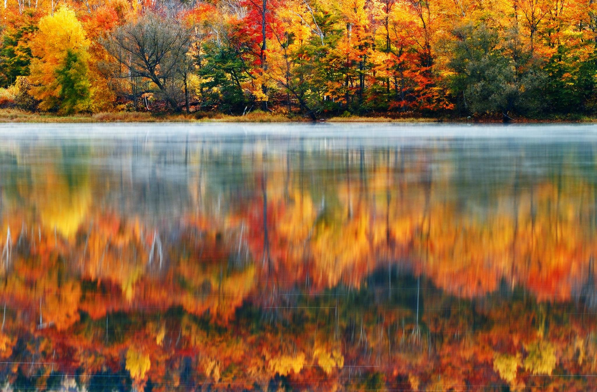 Vermont Fall Foliage Wallpapers