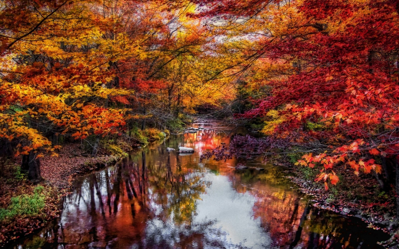nature, Landscape, River, Leaves, Colorful, Trees, Fall
