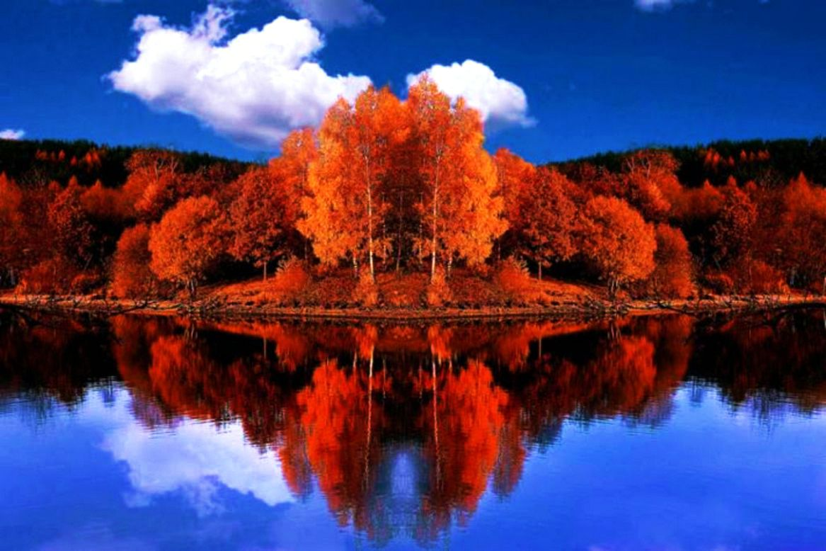 Autumn Reflections Fall Trees Lake Colors HD Wallpapers
