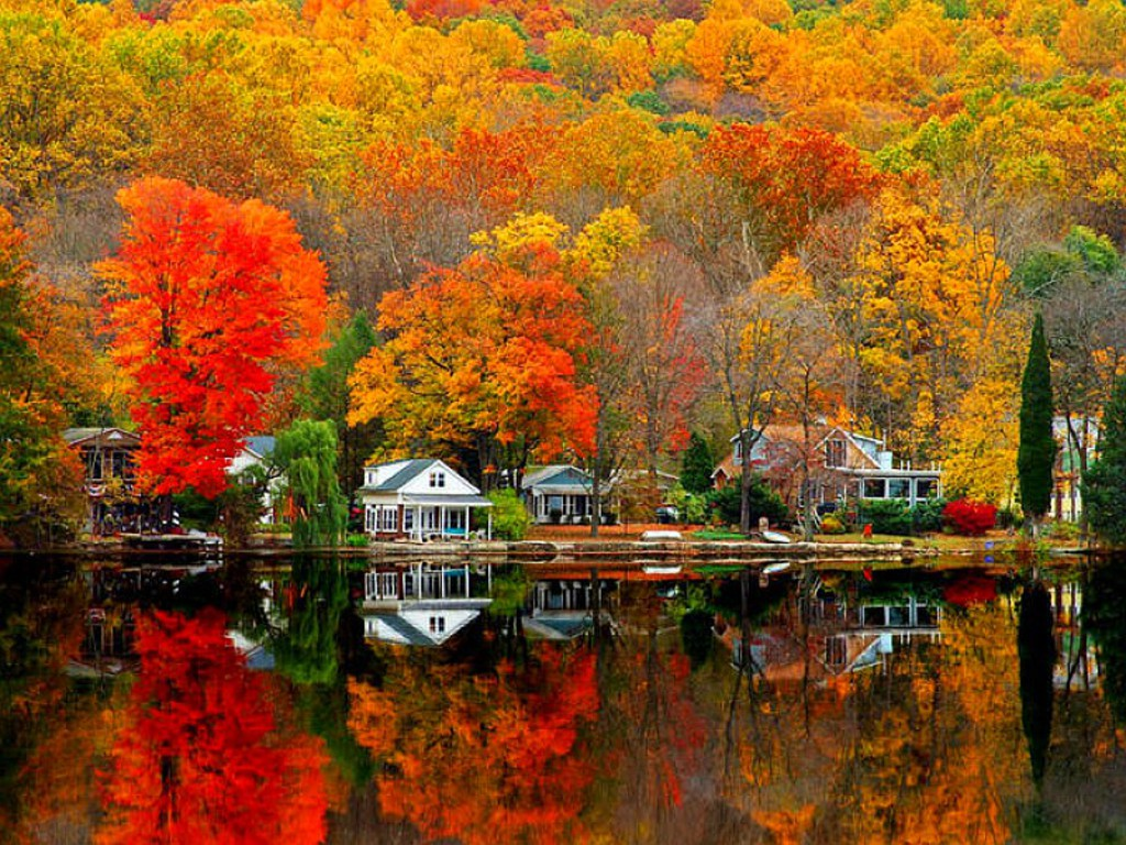 Free fall foliage wallpapers Gallery