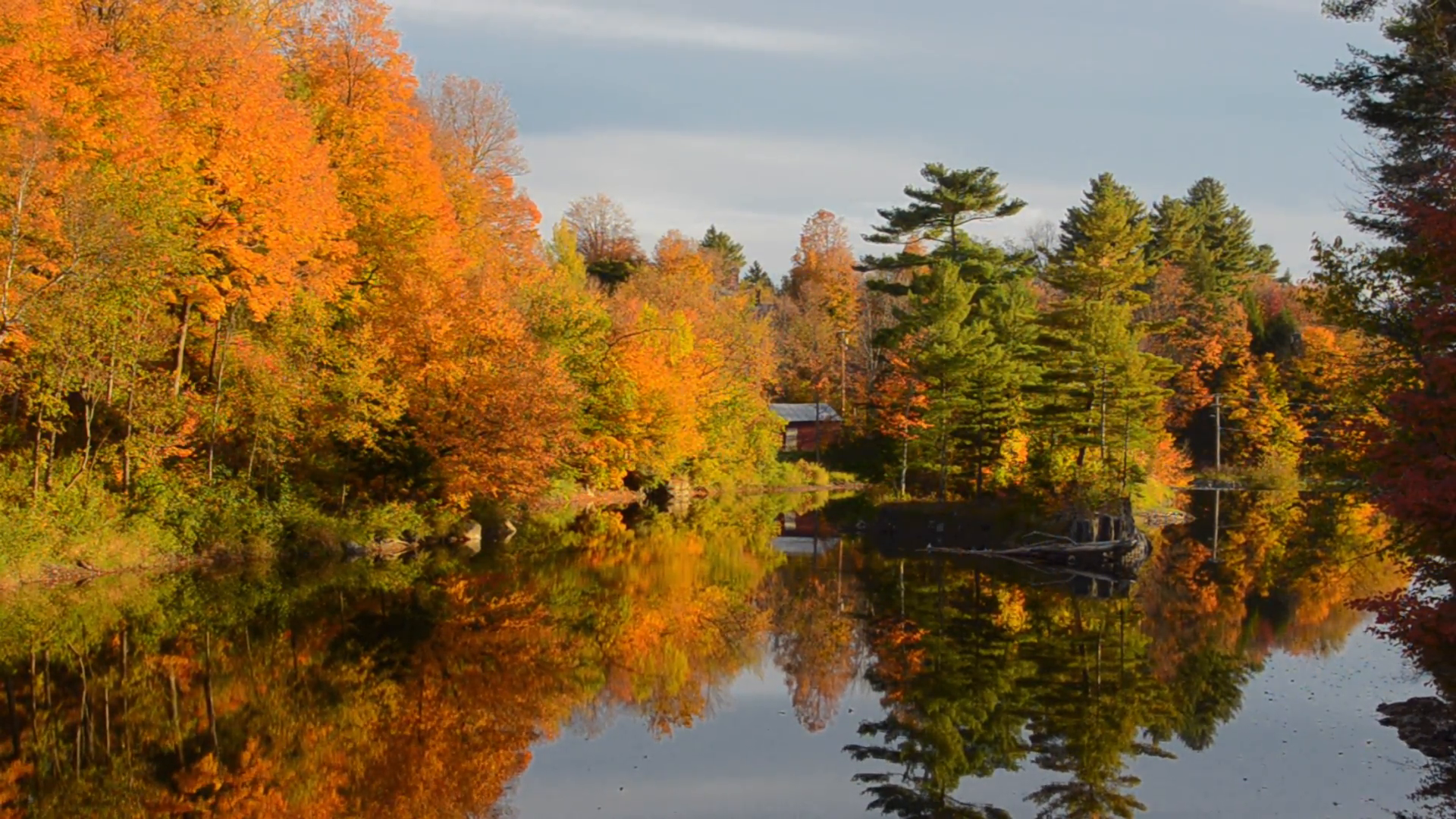 Morrisville Vermont beautiful Lake Lamoille scene with fall foliage colors and reflections and gold leaves Stock Video Footage