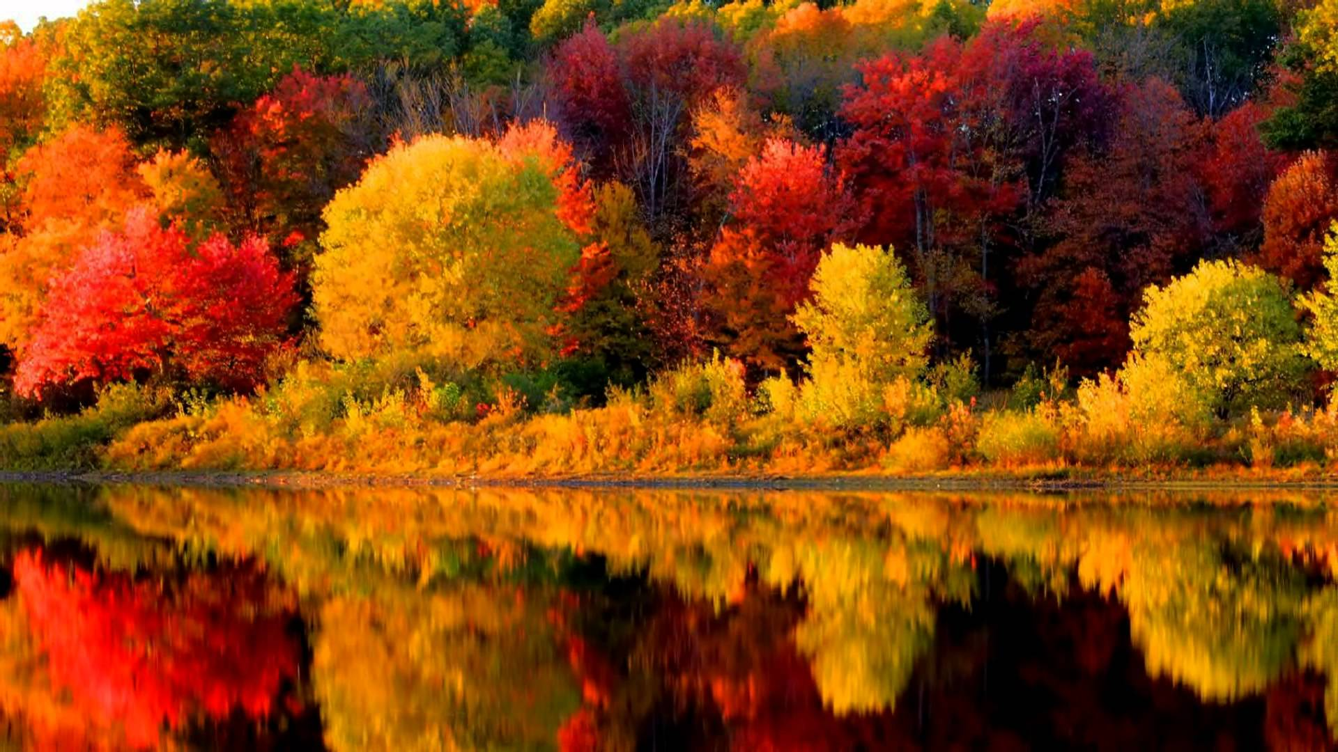 17423 new england fall wallpapers