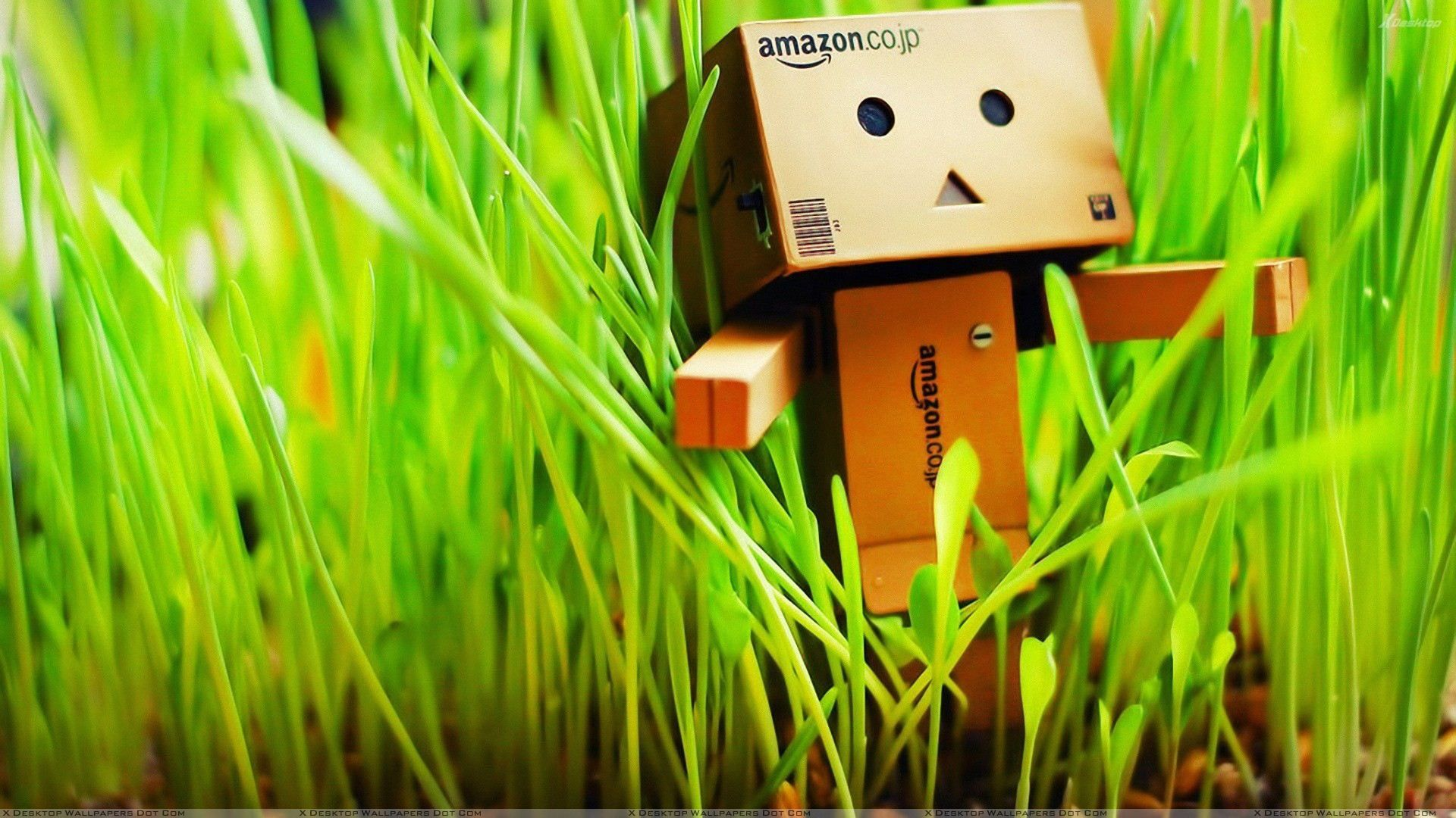 Amazon Box In Grass Wallpapers