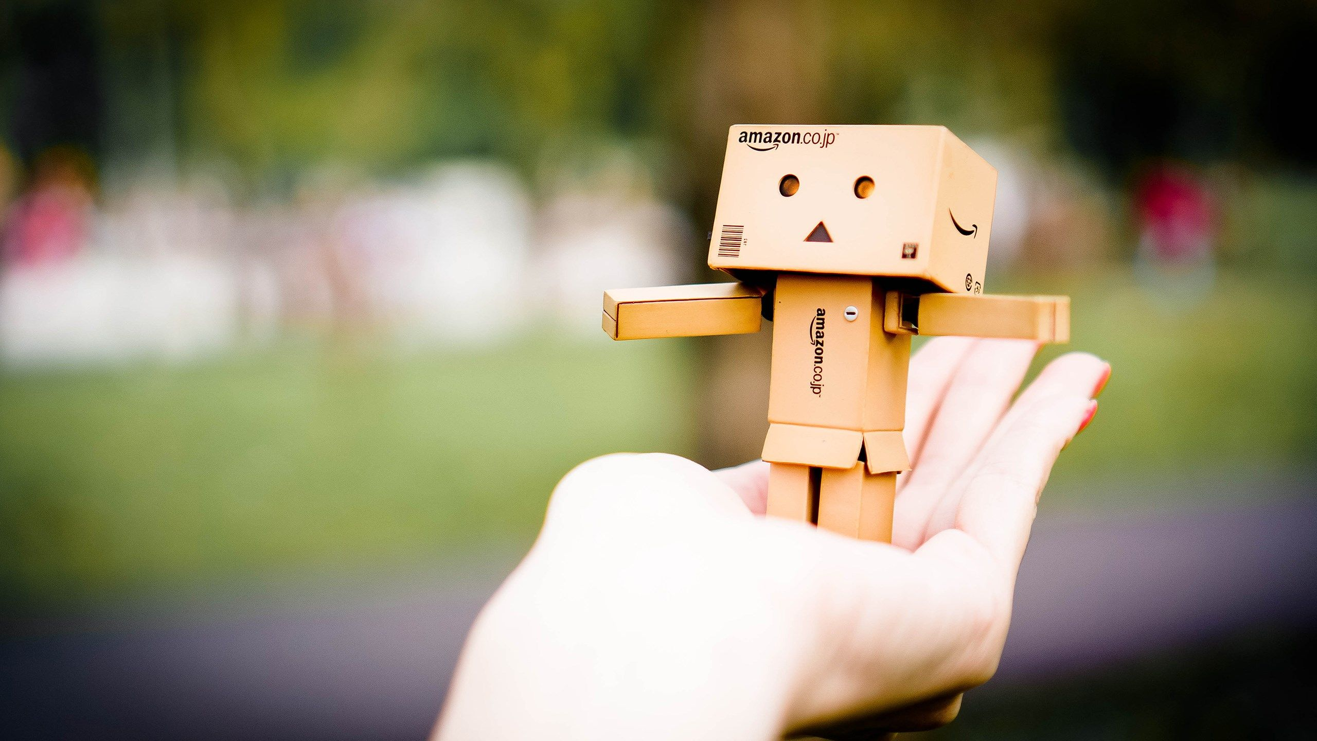 Amazon Danbo, HD Cute, 4k Wallpapers, Image, Backgrounds, Photos