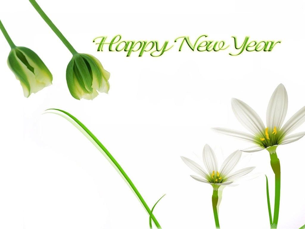 Happy New Year Flowers Wallpapers Christian Wallpapers And