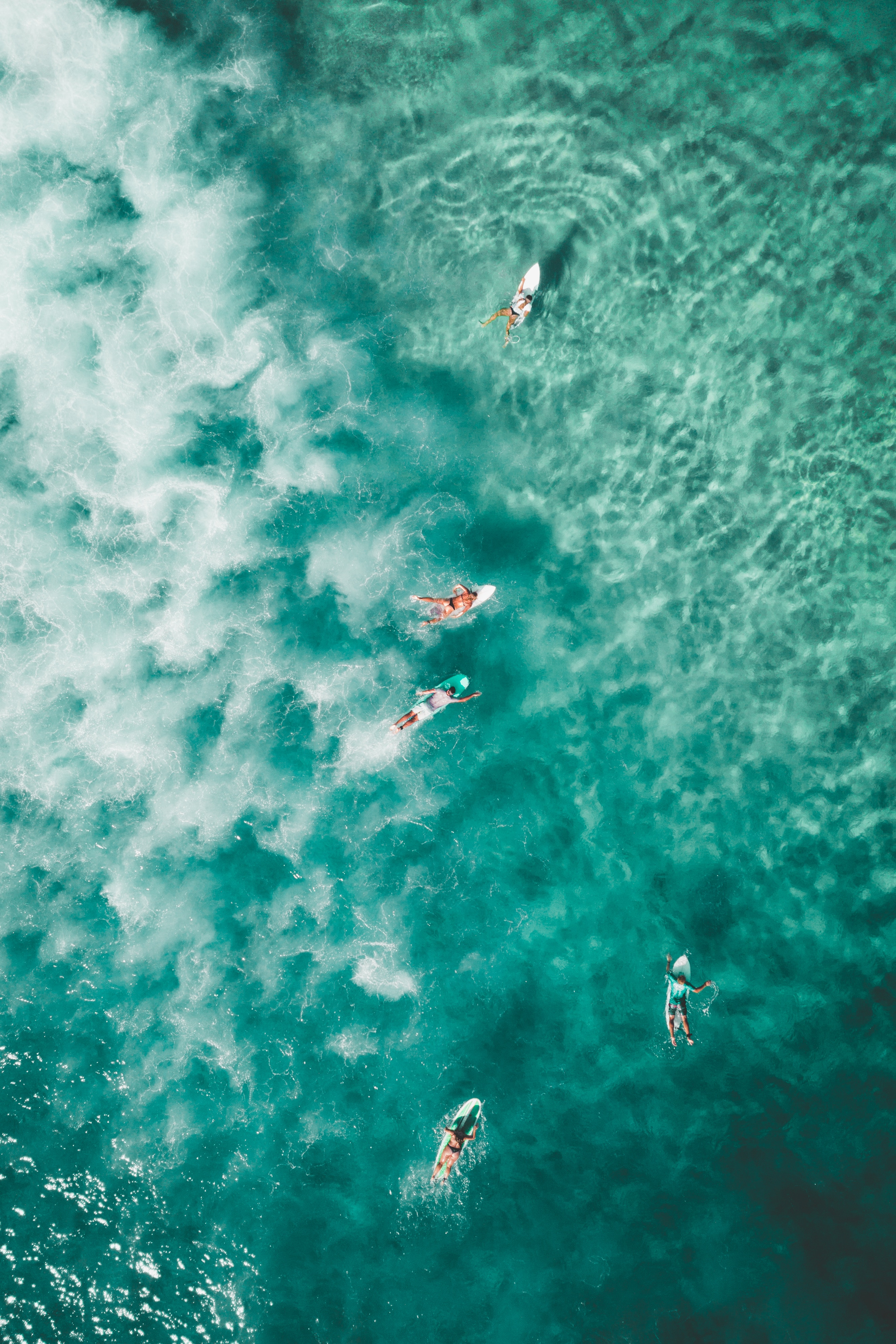 Download Bondi Beach Surfers Android Wallpapers