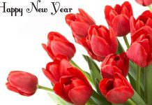 Happy New Year With Flowers Wallpapers.jpg