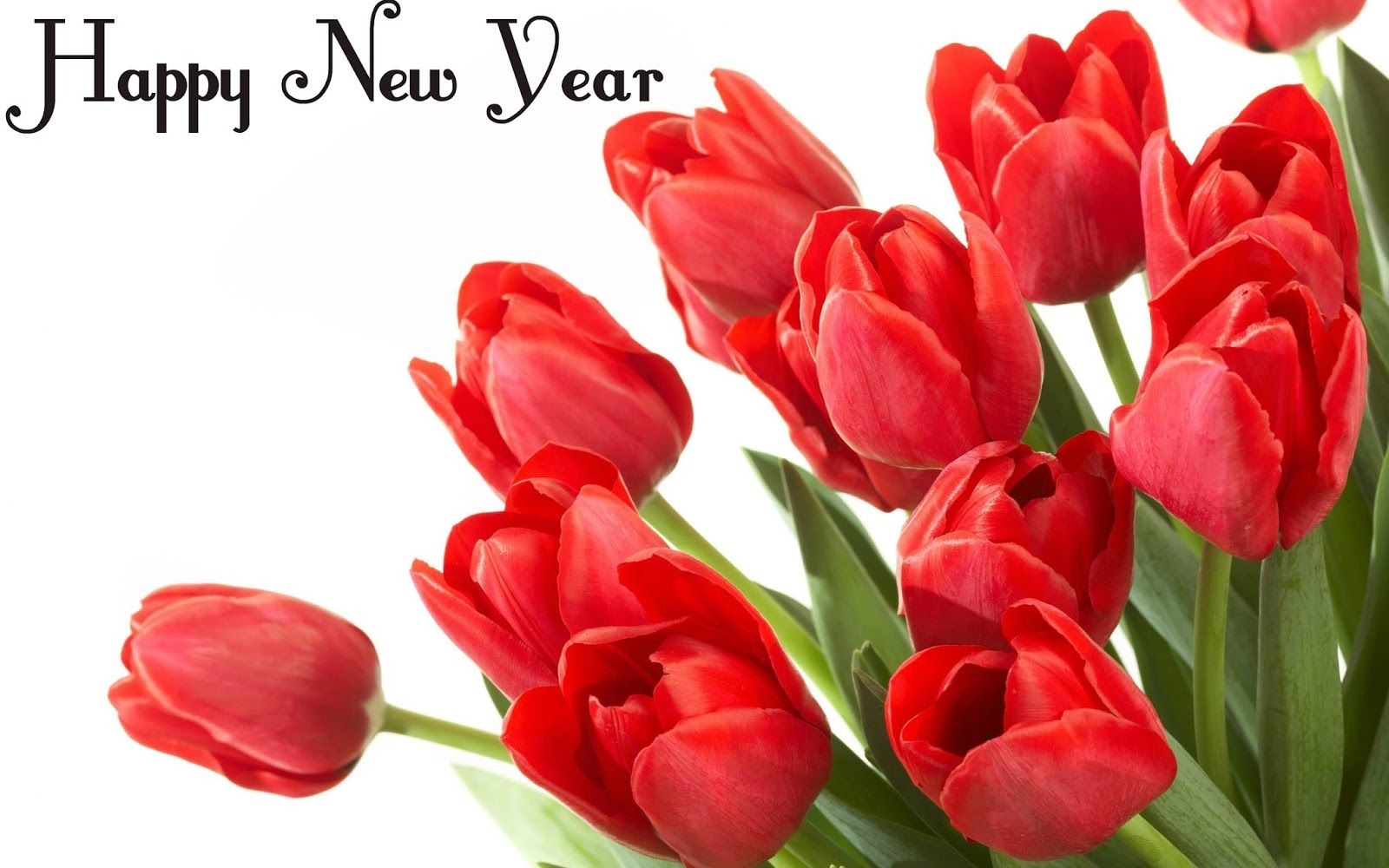Happy New Year 2016 Flowers Photo Bouquets Wallpapers